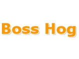 show details for Boss Hog and Barbeque Company