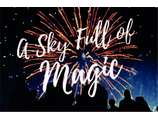 show details for Illusion Fireworks Ltd
