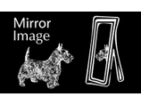 show details for Mirror Image Kent